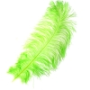 "Ostrich Wing Feathers 18-24"" Premium Qlty 1/2 Lb Lime Green"